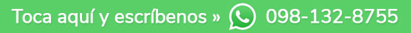 Whatsapp Stilos Floreria Sangolqui