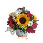 Varias Flores 500 X 500