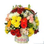 Varias flores 2 500 X 500